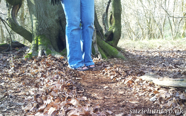 Following a maze drawn out with leaves